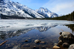 De Bergen van Grand Teton Stock Afbeeldingen