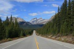 De Bergen van het Brede rijweg met mooi aangelegd landschap van Icefields stock foto