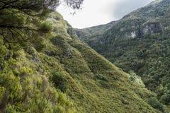 De bergen van madera Stock Afbeeldingen