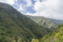 De bergen van madera Royalty-vrije Stock Foto