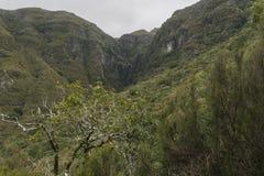 De bergen van madera Stock Foto