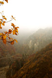 De bergen van Mistic Royalty-vrije Stock Foto's