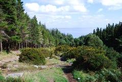 De Bergen van Mourne, Noord-Ierland Royalty-vrije Stock Afbeeldingen