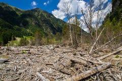 De bergen van Oostenrijk Stock Foto