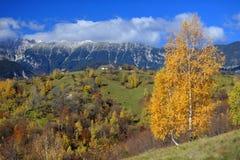 De bergen van Piatracraiului stock afbeeldingen