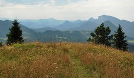 De bergen van Pieniny Stock Fotografie