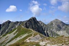 De bergen van Rohace Stock Foto's