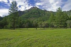 De bergen van Sayan van het oosten. Stock Foto