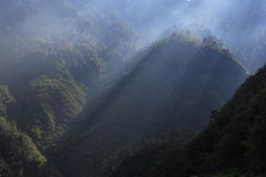 De Bergen van Sikkim Stock Foto's