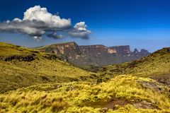 De Bergen van Simien, Ethiopië stock foto