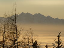 De bergen van Tatra Royalty-vrije Stock Foto