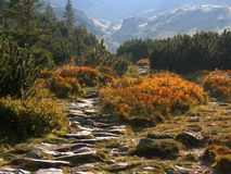 De Bergen van Tatra in Polen Royalty-vrije Stock Foto
