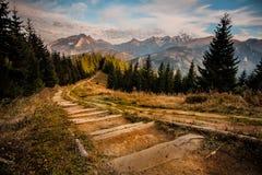 De bergen van Tatry stock foto's