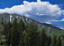 De Bergen van Utah Stock Foto