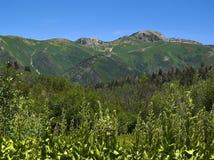 De Bergen van Utah - 3 Royalty-vrije Stock Afbeelding