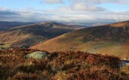 De Bergen van Wicklow - Ierland stock afbeelding
