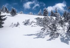 De bergen van de winterjeseniky in Tsjechische republiek met sneeuw, klein haarlok en blauwe hemel met wolken Royalty-vrije Stock Foto