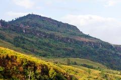 De bergen zijn ontbossing royalty-vrije stock afbeeldingen