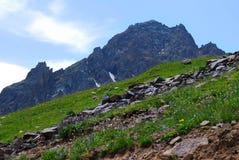 De bergenlandschap van Alma Ata op de zomerdag Royalty-vrije Stock Fotografie