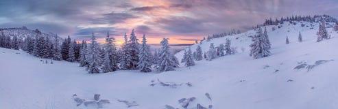 De bergenlandschap van de winter Stock Fotografie