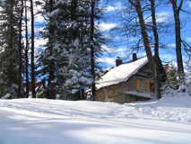 De berghuis en bos van de winter Royalty-vrije Stock Foto's