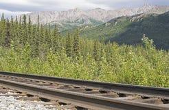 De Bergketen van Alaska Stock Afbeelding
