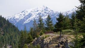 De Bergketen van de het noordencascade, Washington State, de V.S. stock foto's