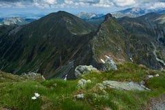 De bergketen van Rohace Royalty-vrije Stock Afbeelding