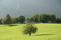 De berglandbouwbedrijf van de ecologie royalty-vrije stock afbeeldingen