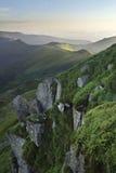 De berglandschap van de de zomerochtend met sparbos op helling Royalty-vrije Stock Foto's