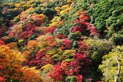 De berglandschap van de herfst Nationale reserve Karadag royalty-vrije stock afbeeldingen