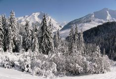 De berglandschap van de winter Royalty-vrije Stock Foto