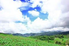 De berglandschap van de wolkenhemel naturel Stock Foto
