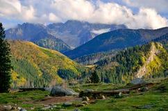 De berglandschap van de zomer Stock Afbeeldingen