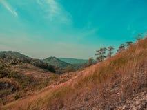 De Berglandschap van het gebiedsgras Stock Afbeelding