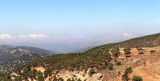 De berglandschap van Libanon met pijnboombos Stock Fotografie