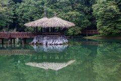 De Berglandschap van Taiwan Alishan Royalty-vrije Stock Fotografie