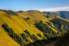 De berglandschap van Tianshan stock foto