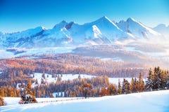 De berglandschap van de winter  De zonsopgang van de winter in de bergen royalty-vrije stock afbeelding