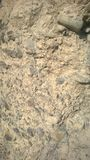 De bergongeluksbode van de boogvallei banff Stock Foto