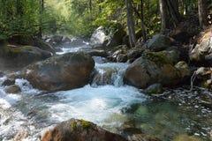 De bergrivier in bosbarguzinskaya Stock Afbeelding