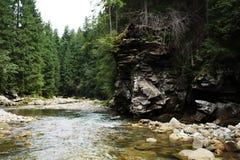 De bergrivier carpathians ukraine Stock Foto's