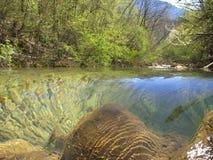 De bergrivier in de lente Royalty-vrije Stock Fotografie