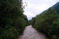 De bergrivier is lawaaierig, snel, gevaarlijk stock afbeeldingen