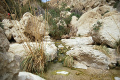 De bergrivier met de uiterst kleine dalingen Royalty-vrije Stock Foto's