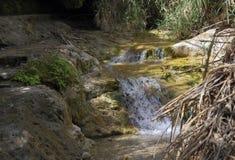 De bergrivier met de uiterst kleine dalingen Stock Afbeelding
