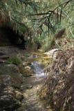 De bergrivier met de uiterst kleine dalingen Stock Afbeeldingen