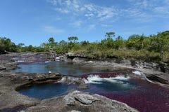 De bergrivier van Canio Cristales. Colombia Stock Afbeelding