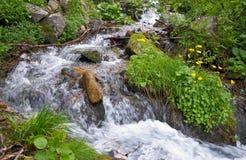 De bergrivier van de zomer Stock Foto's