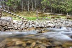 De bergstroom in het bos, bij de bodem is stenen Dichtbij weilandomheining voor vee stock fotografie